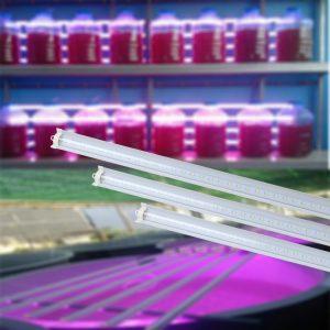 Đèn LED chuyên dụng trồng Tảo rạng đông LED T 25W 12050B50RĐèn LED chuyên dụng trồng Tảo rạng đông LED T 25W 12050B50R