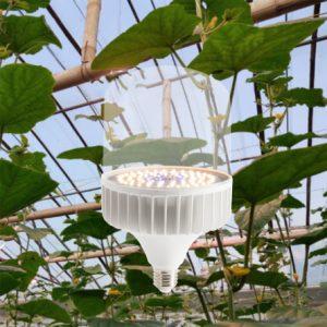 Đèn LED trồng cây rạng đôngTC-T13550W WBU